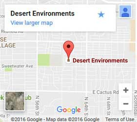 Desert Environments on Google Maps