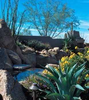 Landscape Contractor Scottsdale