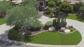 Landscape Service Scottsdale