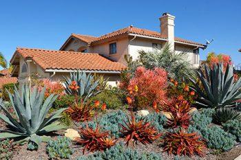 Landscape Service Phoenix