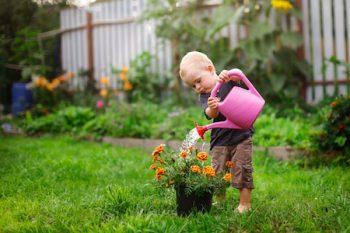 how to plan a garden paradise valley